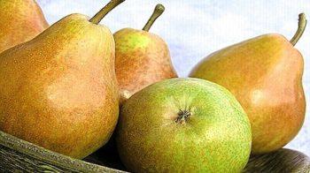 Вкусные рецепты с грушами
