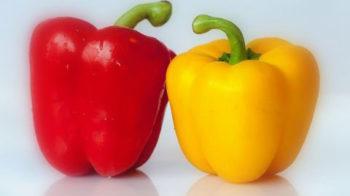 Рецепты из болгарского перца