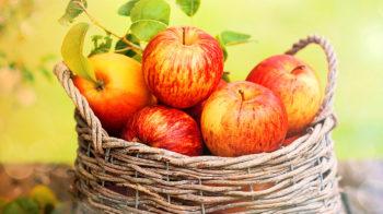 Польза яблок, секрет выбора и вкусные рецепты с яблоками